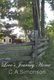 Love's Journey Home: The Search for Love